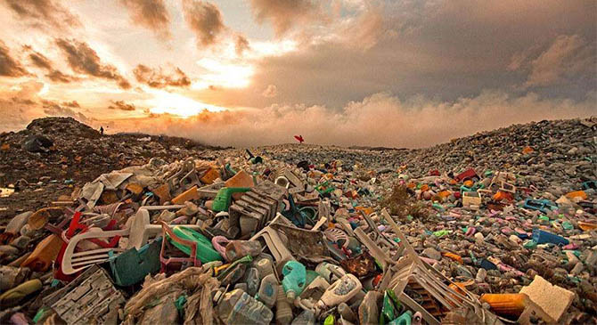 塑料垃圾新解决方案:用海藻做原料